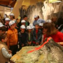 GUIDED TOUR AT THE MUSEUM