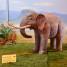 Inaugurazione elefante nano